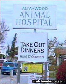 Animal Dinners